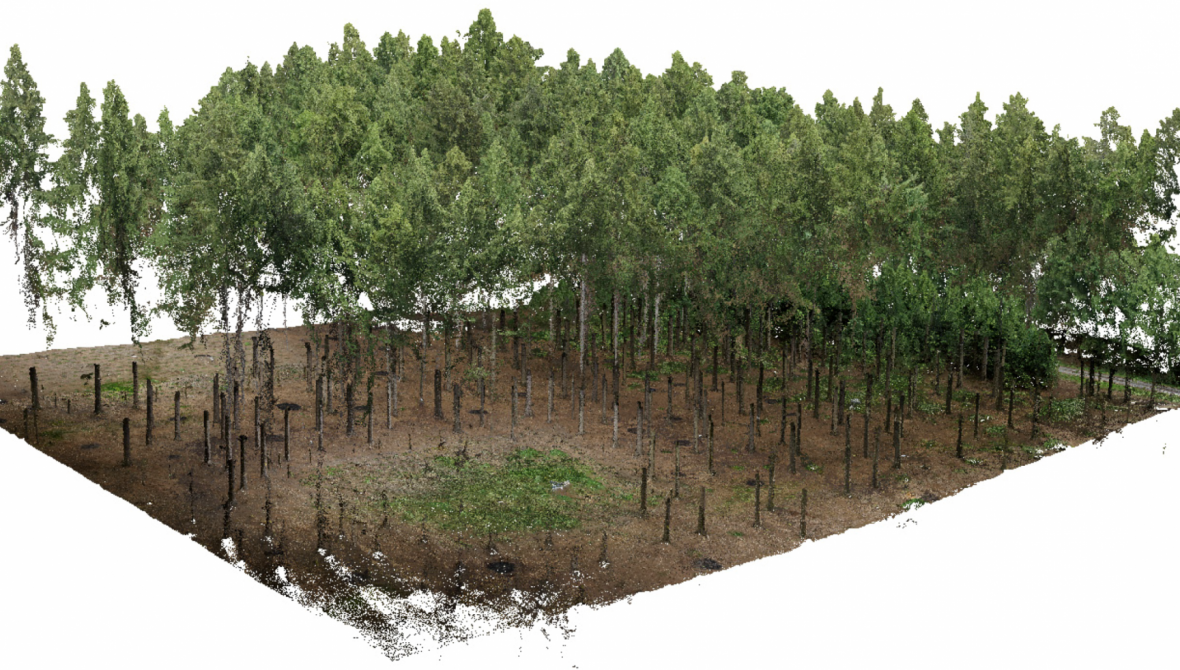 HOLDING IMAGE 3 Mikita et al - 3D view of point clouds from terestrial and aerial photogrammetry - 2016